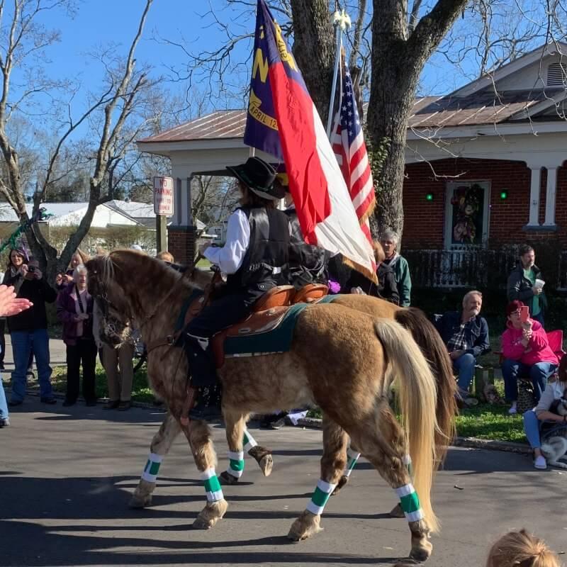 Horse leading Ghent New Bern Mardi Gras parade 2020